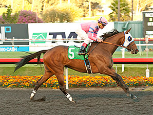 Broken Sword Never Looks Back in Bayakoa Win