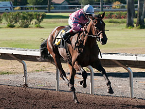 Hollendorfer Sends Out Pair in Bayakoa