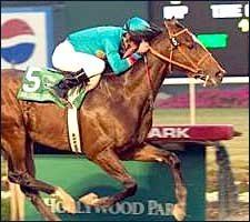 Steve Haskin's Derby Trail Stakes Preview: Winter Wonder
