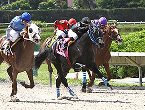 Brothersofthetime wins the 2013 Seacliff Stakes