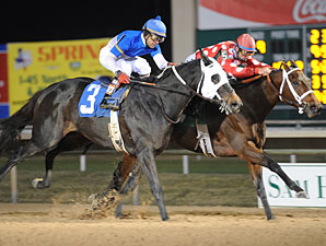 Bubbler wins the 2009 Gallery Furniture Distaff.