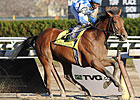Steve Haskin's Derby Dozen: January 25, 2010