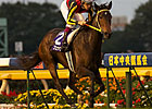 Buena Vista Dominates Tenno Sho Autumn