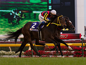 Buena Vista Earns Japan Cup Redemption