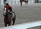Buggin Out Wins Alabama-Bred Stakes in LA