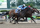 C C&#39;s Pal Tops 7-Horse Bed O&#39; Roses Field