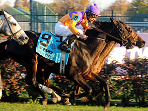 Court Vision in the Breeders' Cup Mile.