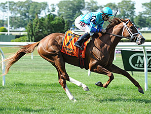 Cabo Cat wins the 2014 Manila Stakes.