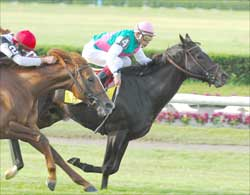 Cacique Holds on in Manhattan Squeaker