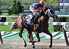 Claimer Caixa Eletronica Upsets Westchester