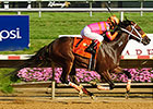 Calamity Kate Pulls Delaware Oaks Shocker