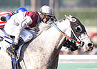 Calculator Wins in Santa Anita Return