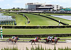 Renovations Noted at 'Gulfstream Park West'