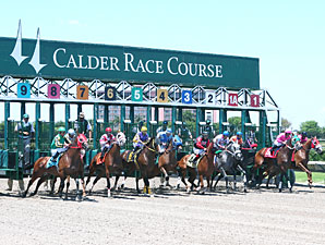 Calder Sees Rise In Handle