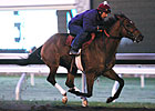 Caleb&#39;s Posse Breezes Again at Keeneland