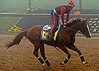 California Chrome Camp Dispels Sickness Rumor