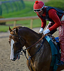 New Derby Arrivals Take to Track