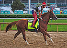 Kentucky Derby News Update for April 30, 2014