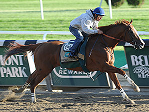 California Chrome - Belmont Park, May 31, 2014.