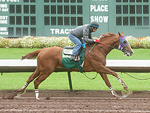 California Chrome Work