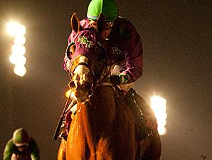 California Chrome wins the King Glorious Stakes.