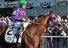 California Chrome Has Easy Half-Mile Drill