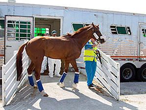California Chrome Profile News Entries Results Video