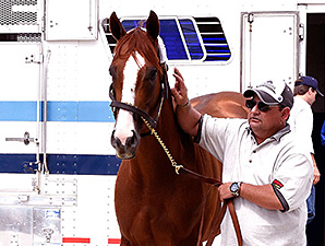 California Chrome Arrives at Pimlico