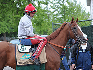 California Chrome - Belmont Park, May 23, 2014