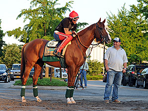 'Chrome' Becomes Poster Boy for CA Breeders