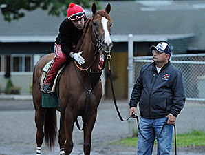 California Chrome - Belmont Park, May 24, 2014.