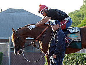 Foal Crop Size Favors California Chrome