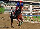 California Chrome Draws Post 2 for Belmont