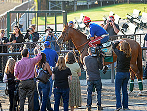 Using Triple Crown Buzz to Attract New Owners