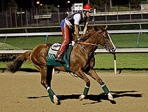 California Chrome gallops at Churchill Downs, May 12, 2014