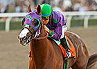 California Chrome Will Skip Lockinge Stakes
