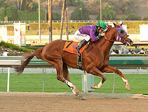 California Chrome wins the 2014 California Cup Derby..