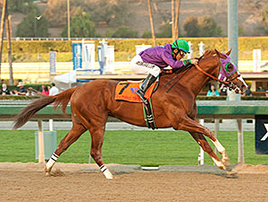 California Chrome wins the 2014 California Cup Derby.