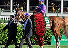 Taylor Made Launches California Chrome Site