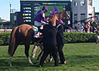 California Chrome After Kentucky Derby Win
