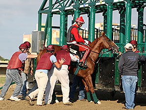 California Chrome, Parx Racing, September 19, 2014