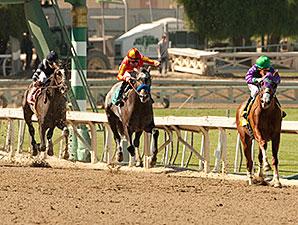 California Chrome wins the 2014 San Felipe.