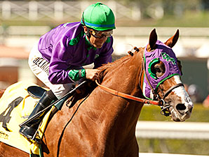 California Chrome Chasing the Derby Dream
