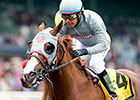 California Chrome Departs for Dubai