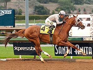 California Chrome wins the 2016 San Pasqual Stakes.