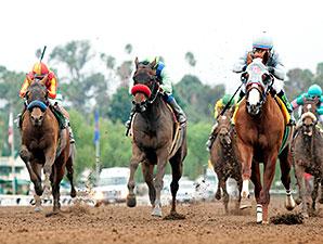 California Chrome wins the San Pasqual Stakes.