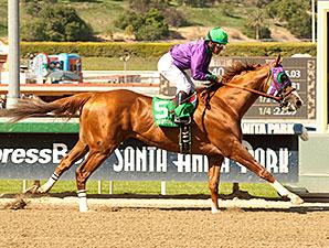 California Chrome wins the 2014 Santa Anita Derby.