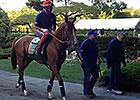 Belmont Stakes: California Chrome Schools