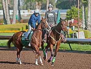 California Chrome - Los Alamitos, April 26, 2014