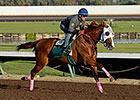 California Chrome Works at Los Alamitos